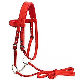 Rein Belt Horse Halter With Bit Riding Equipment