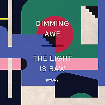 Botany - Dimming Awe the Light Is Raw (Pink Viny [Vinyl] USA import