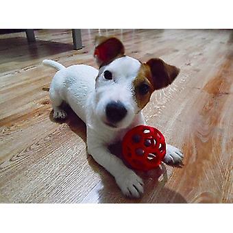 JW animali Hol-ee rullo gomma cane giocattolo