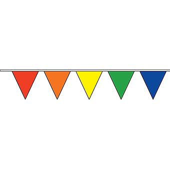Rainbow triangolare Bunting