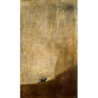 الكلب، فرانسيسكو غويا، 60x35cm