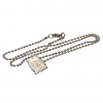 Manchester City Stainless Steel Pendant & Chain EC