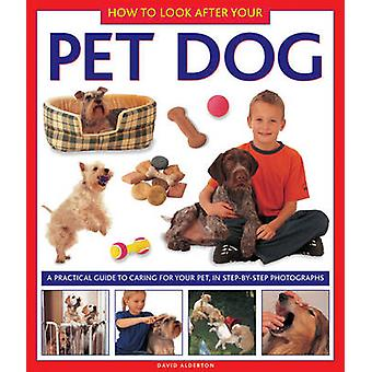 How to Look After Your Pet Dog by David Alderton