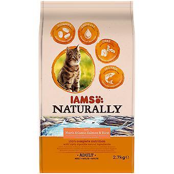 IAMS luonnollisesti aikuinen kissa lohi (kissat, katti elintarvikkeet, kuivata elintarvikkeet)
