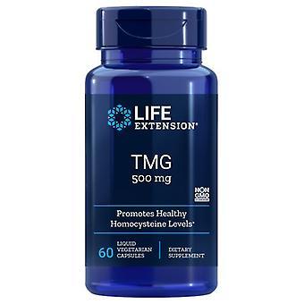 """הארכת חיים TMG, 500 מ""""ג, 60 Vcaps נוזלי"""