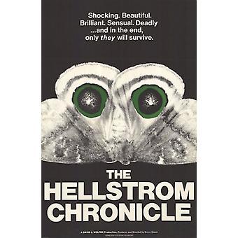 Hellström Chronicle elokuvajuliste (11 x 17)