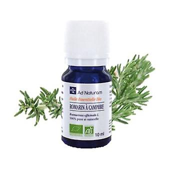 Rosemary camphor essential oil 10 ml of essential oil
