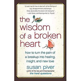Ett brustet hjärta visdom: hur till vända smärtan av en upplösning till Healing, insikt och nya kärlek