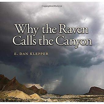Varför Korpen kallar ravinen: utanför nätet i Big Bend land (Charles och Elizabeth Prothro Texas fotografering serien)