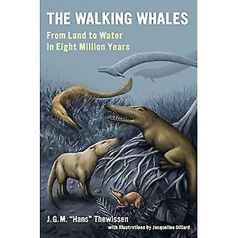 Wale zu Fuß: Vom Land zum Wasser in 8 Millionen Jahren