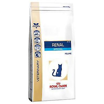 Royal Canin Renal Special Feline (Cats , Cat Food , Dry Food)