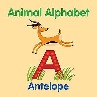 Animal Alphabet by New Holland Publishers - 9781760791063 Book