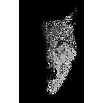 In het gezelschap van wolven Weerwolven Wolven en wilde kinderen Manchester University Press