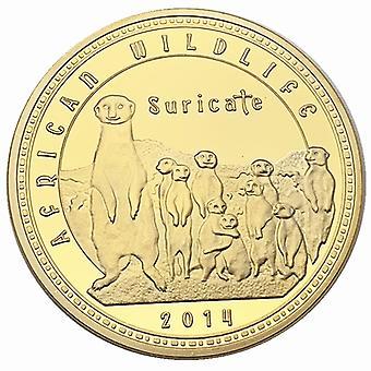 Pièce d'or animale africaine zambienne Collection de pièces commémoratives Pièce d'or sauvage Pièce de monnaie étrangère Médaille commémorative étrangère