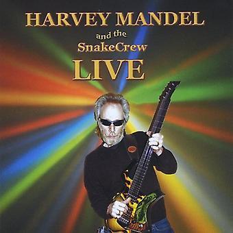 Harvey Mandel & a tripulação cobra - viver na importação EUA Biscuit & Blues [CD]