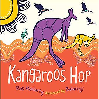 Kangeroos Hop