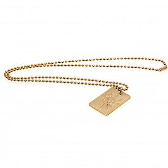 Rangers Gold Plated Pendant & Chain DT
