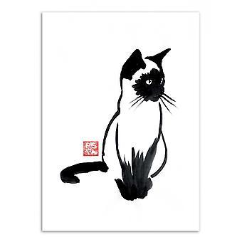 Art-Poster - Siamese - Pechane Sumie 50 x 70 cm