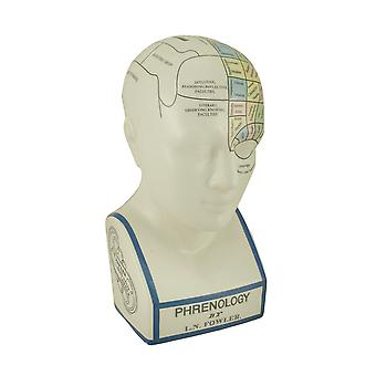 Large Phrenology Head With Color Trait Map Ceramic Coin Bank