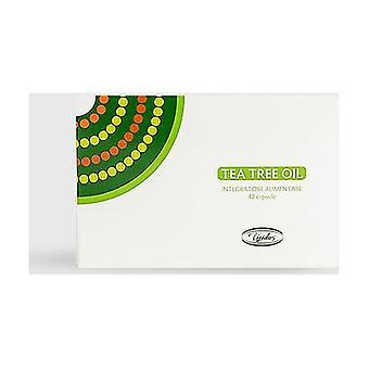Tea Tree Capsules 30 capsules of 70mg