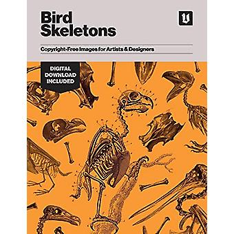 Bird Skeletons - Copyright-Free Images for Artists & Designers by