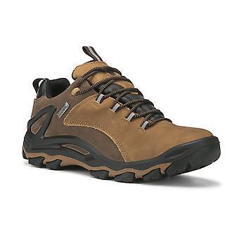 Brown 4 Inch Men's Waterproof Hiking Shoes Ks 252