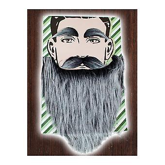 Skæg og moustacher gråt skæg med gråt overskæg og wenkbrauwenMarcel