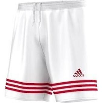 Adidas Entrada 14 F50636 training all year men trousers