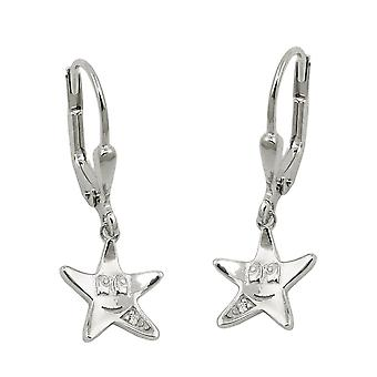 Brisur 25x9mm star with a face of cubic zirconia white rhodium-plated Silver 925