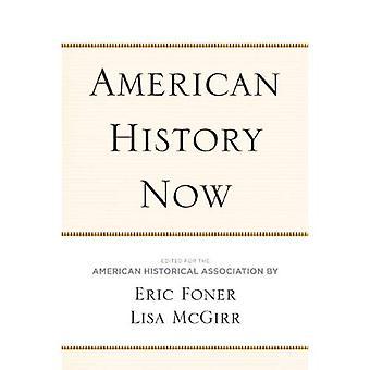 Amerikaanse geschiedenis nu