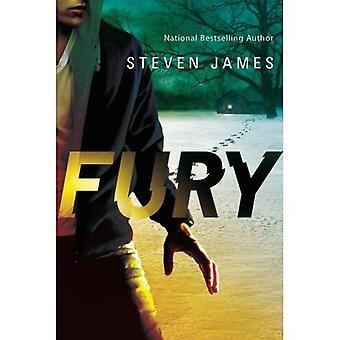 Fury (Blur Trilogy)