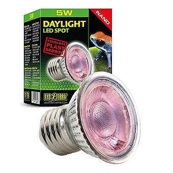 Exo Terra Daylight LED Spot Nano 5w