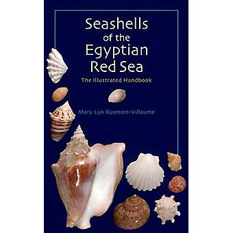 Schelpen van de Egyptische Rode Zee - The Illustrated Handbook door Mary L