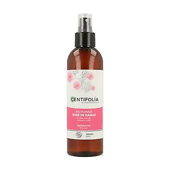 Damask Rose Floral Water 200 ml of floral water