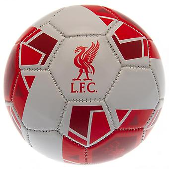 Liverpool Football Club Geometric Mini Football