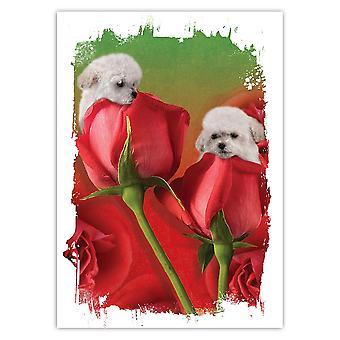 هدية ملصقا: بودل الورود الزهور الكلب