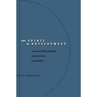 Utvikling - protestantiske NGOer - moral - og økonomi