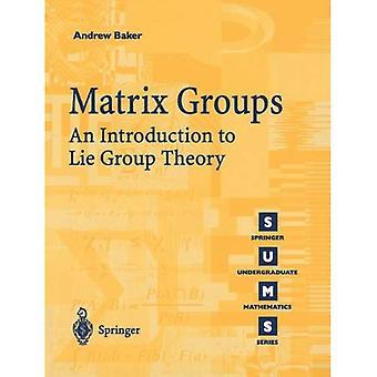 Matrix Groups: An Introduction to Lie Group Theory (Springer Undergraduate Mathematics)