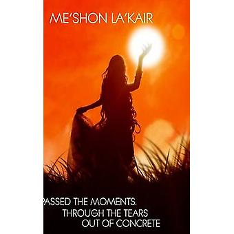 Passed The Moments Through the Tears Out of Concrete by LaKair & MeShon