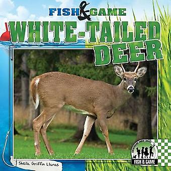 White-Tailed Deer by Sheila Griffin Llanas - 9781624031106 Book