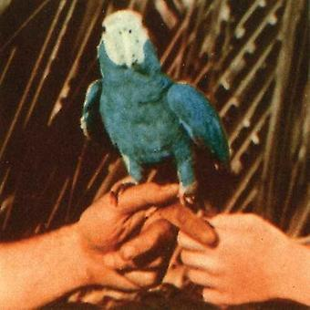 Andrew Bird - Are You Serious [CD] USA import