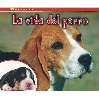 La Vida del Perro = The Life of a Dog