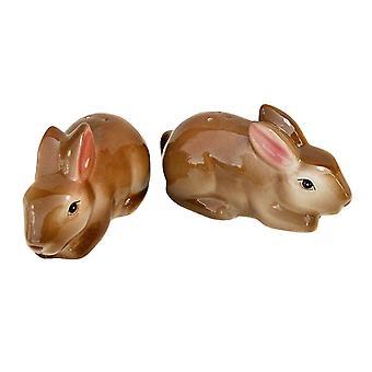 Schattig paar Baby bruin Bunny konijnen keramische Salt en Pepper Shaker Set