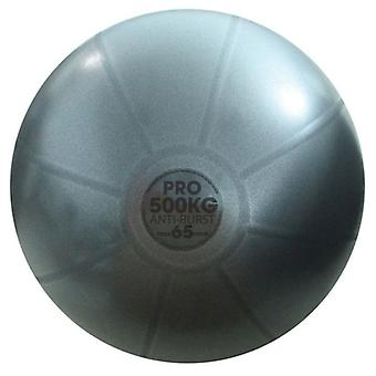 fitness mad studio pro grey equipment gym ball exercise ball 500kg swiss ball