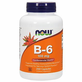 Nyt Elintarvikkeet B-6 100 mg, 250 Korkkia