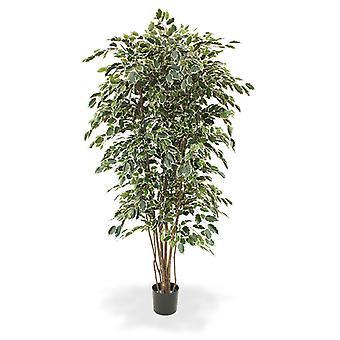 Künstlicher Ficus Exotica Deluxe 210 cm bunt