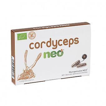 Neo Cordyceps 60 Capsules