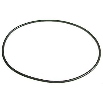 Astral 7731329035 Strainer O-Ring for Astramax Pump