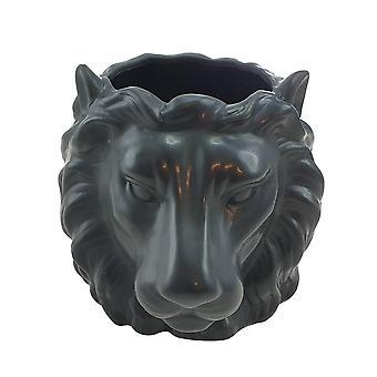 Kruka Lejonhuvud svart