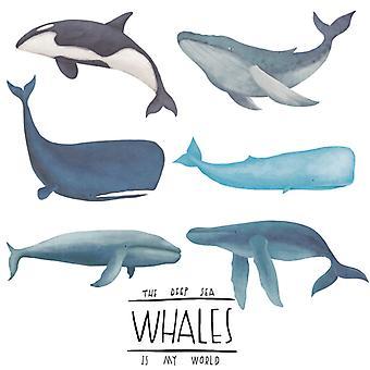 hvaler og delfiner vegg klistremerke dekal (størrelse: 89cm x 87cm)